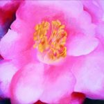 5 Ways to Create Great Abstract Paintings from Nature